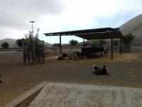 visita-a-la-finca-de-uga-mayo-2014-016