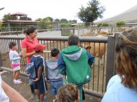 visita-a-la-finca-de-uga-mayo-2014-023