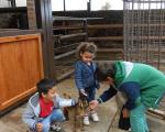 visita-a-la-finca-de-uga-mayo-2014-040