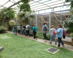 visita-a-la-finca-de-uga-mayo-2014-054