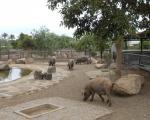 visita-a-la-finca-de-uga-mayo-2014-011