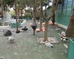 visita-a-la-finca-de-uga-mayo-2014-044