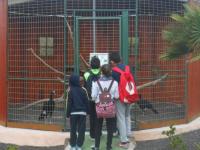 excursion-guinate-tropical-park-2015-024